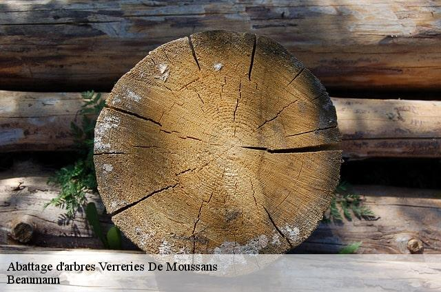 Abattage d'arbres  verreries-de-moussans-34220 Beaumann