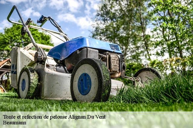 Tonte et refection de pelouse  alignan-du-vent-34290 Beaumann
