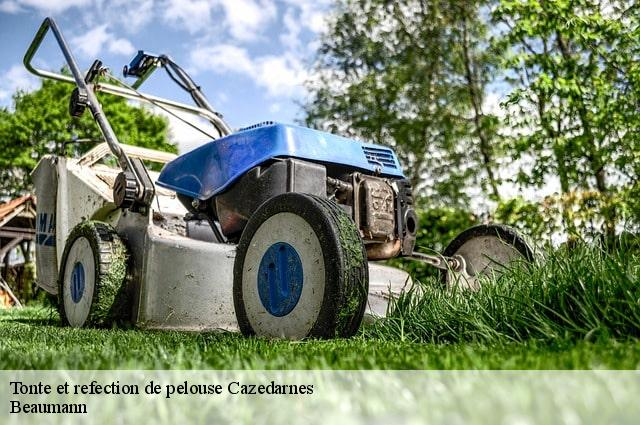 Tonte et refection de pelouse  cazedarnes-34460 Beaumann